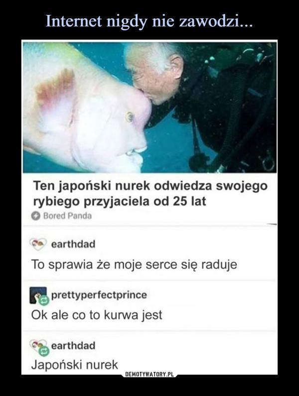 –  Ten japoński nurek odwiedza swojego rybiego przyjaciela od 25 latTo sprawia że moje serce się raduje Ok ale co to kurwa jest Japoński nurek