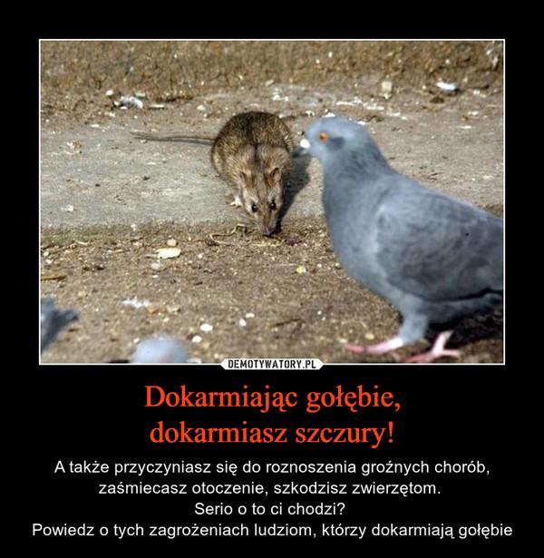 Dokarmiając gołębie,dokarmiasz szczury! – A także przyczyniasz się do roznoszenia groźnych chorób, zaśmiecasz otoczenie, szkodzisz zwierzętom. Serio o to ci chodzi? Powiedz o tych zagrożeniach ludziom, którzy dokarmiają gołębie