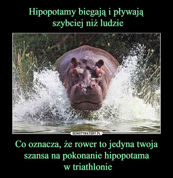 Co oznacza, że rower to jedyna twoja szansa na pokonanie hipopotama w triathlonie –