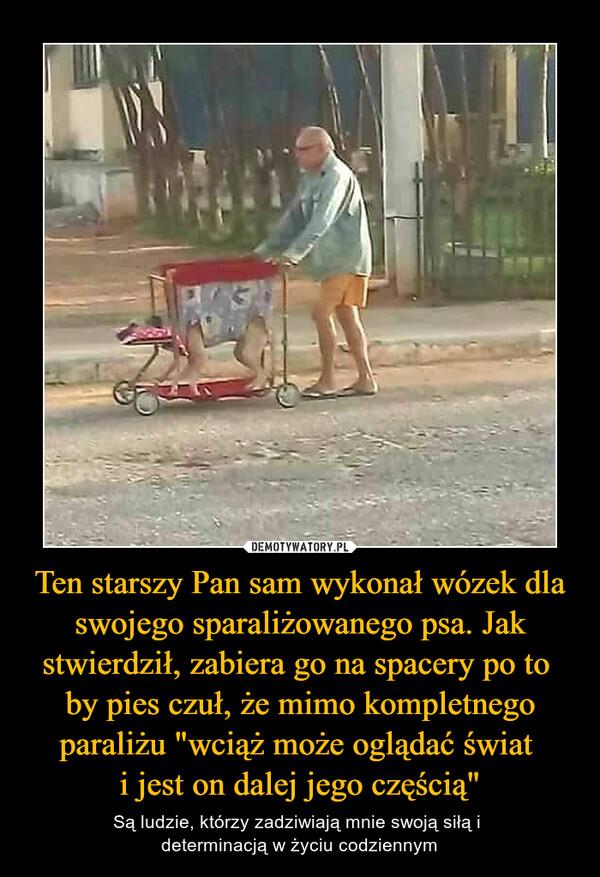 """Ten starszy Pan sam wykonał wózek dla swojego sparaliżowanego psa. Jak stwierdził, zabiera go na spacery po to by pies czuł, że mimo kompletnego paraliżu """"wciąż może oglądać świat i jest on dalej jego częścią"""" – Są ludzie, którzy zadziwiają mnie swoją siłą i determinacją w życiu codziennym"""
